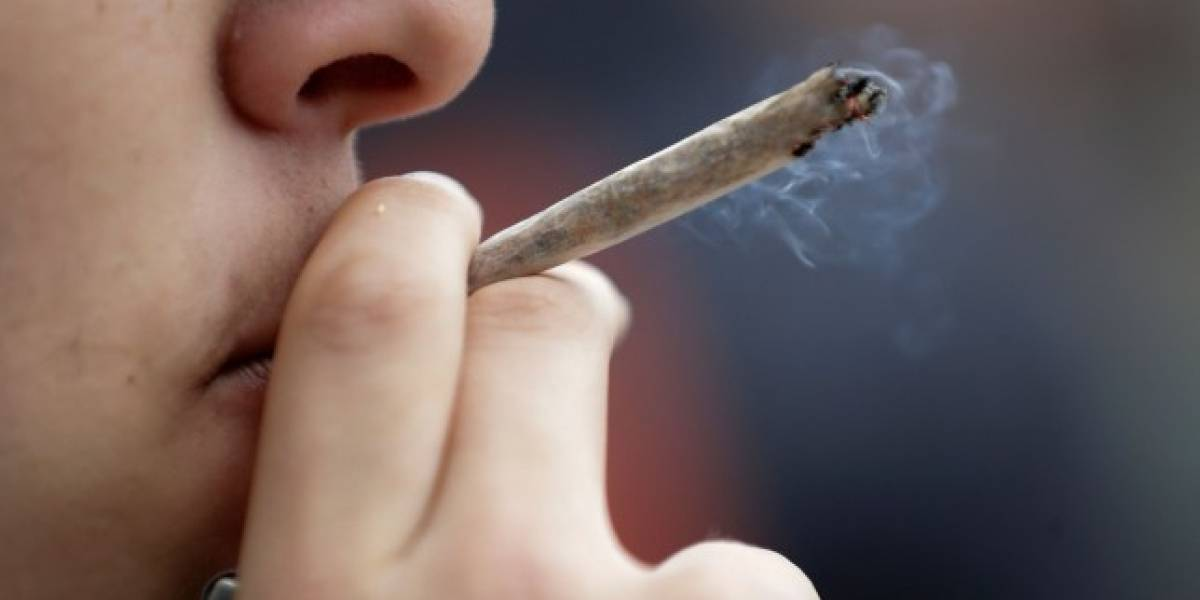 Advierten sobre la interferencia de la marihuana en al menos 50 medicamentos comunes