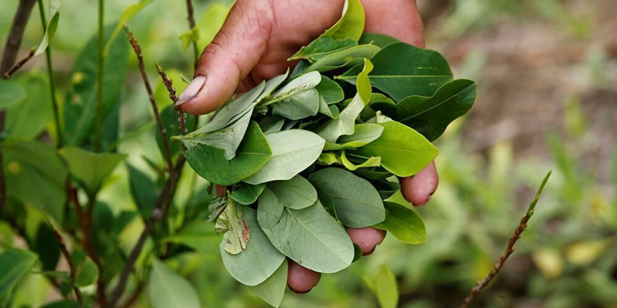 Policías cruzaron a Bolivia a comprar hojas de coca y terminaron contagiados con coronavirus