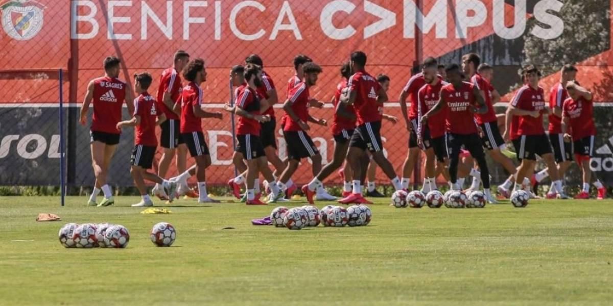 Onde assistir ao vivo o jogo Benfica x Santa Clara pelo Campeonato Português
