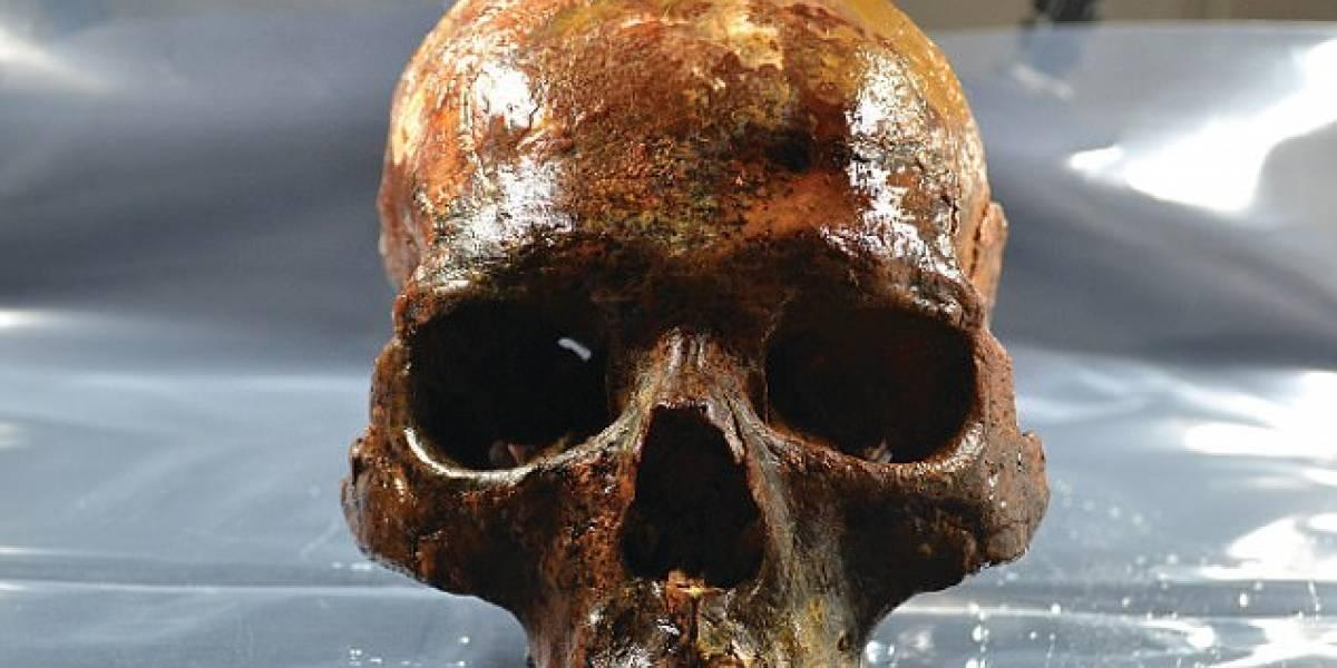 Así era el rostro de un hombre de la Edad de Piedra: encontraron la cabeza en una estaca