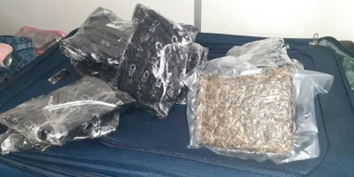 Agentes descobrem 3 quilos de skunk escondido em mala com fundo falso