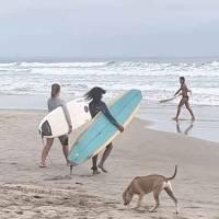 surf-montañita
