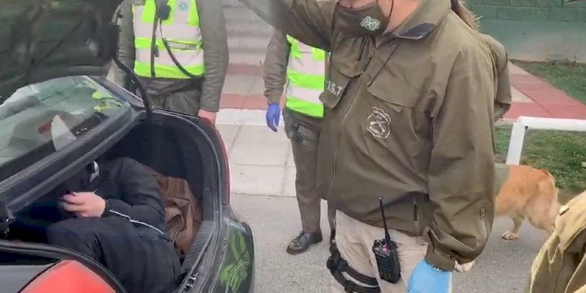 Perro de Carabineros descubrió a hombre que viajaba en maletero de un taxi