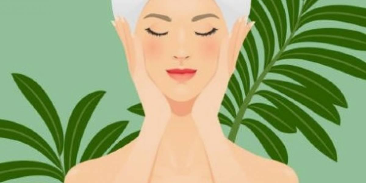 Veja como fazer uma máscara caseira para reduzir os poros dilatados