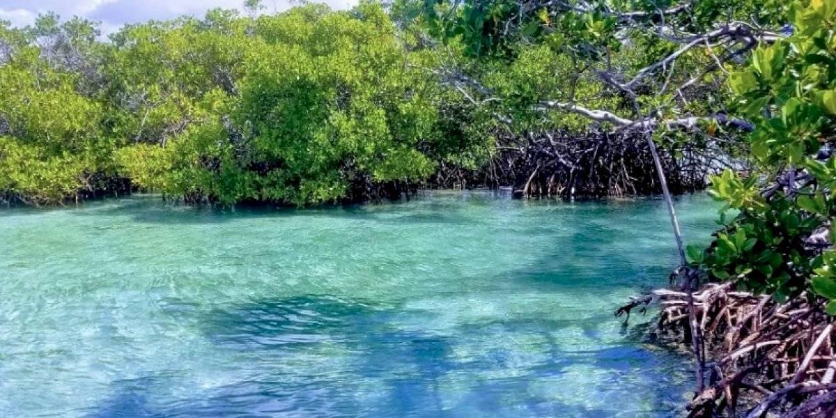 DRNA anuncia apertura de Áreas Naturales Protegidas y Recreativas a partir del 1 de julio