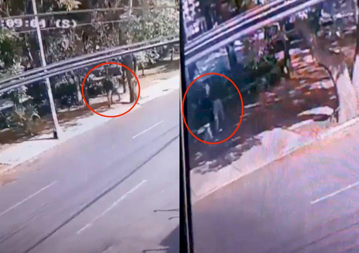 asalto en coyoacán