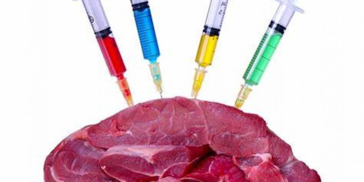 Ciencia: ¿Los antibióticos en los alimentos son un riesgo para tu salud? Así es como afectan tu organismo