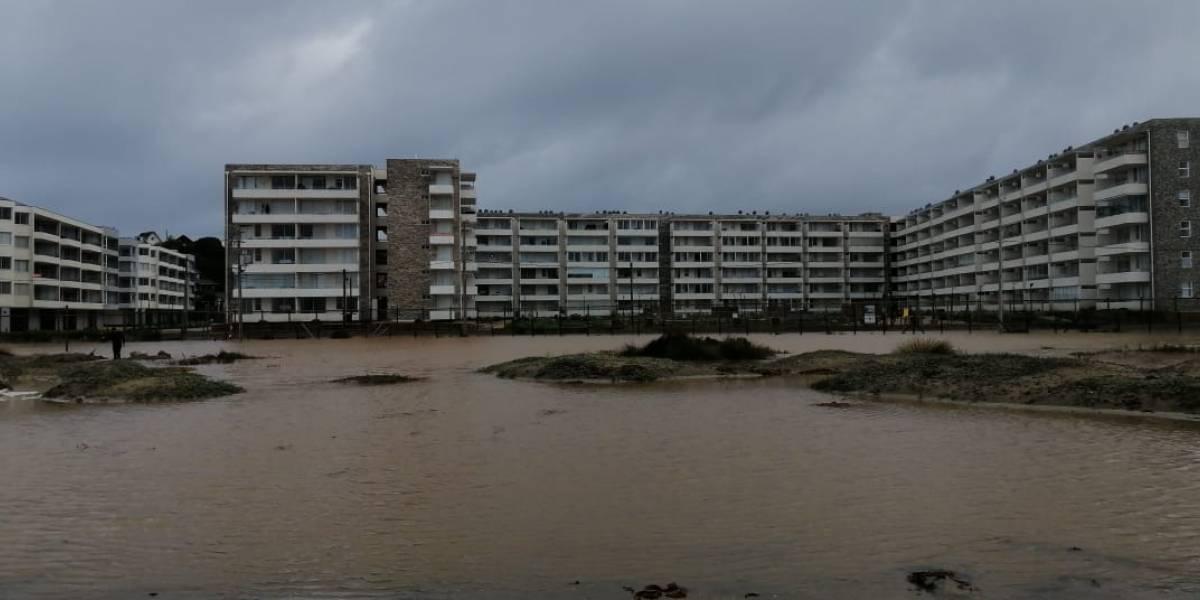 No puedes ir contra la naturaleza: lluvias inundan edificios construidos sobre Humedal Los Molles