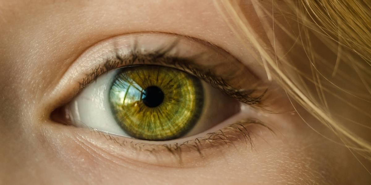 Estes alimentos vão melhorar sua vista