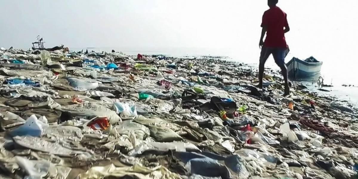 Abren convocatoria para emprendimientos sociales que brinden soluciones innovadoras al problema del plástico