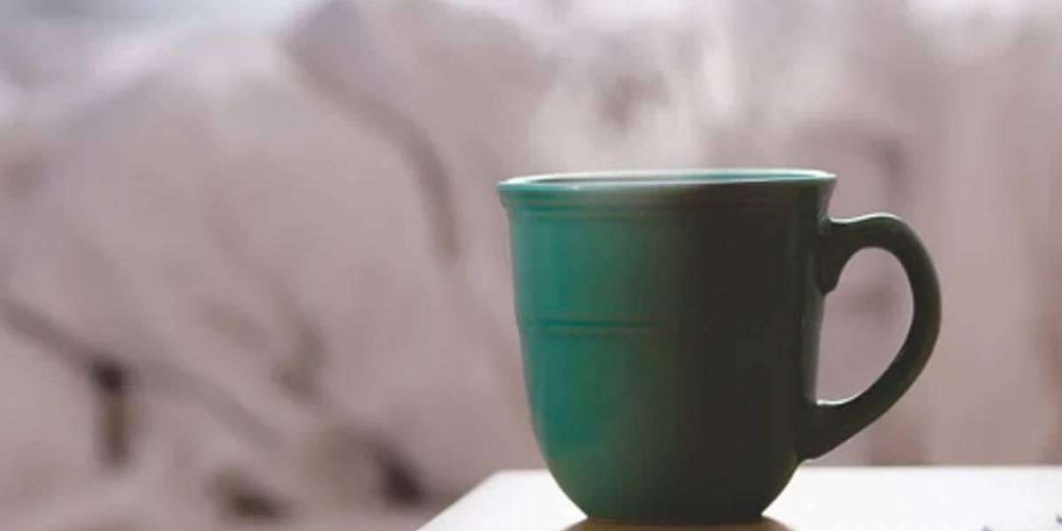 Disfruta de los beneficios que ofrece el té de manzanilla con leche