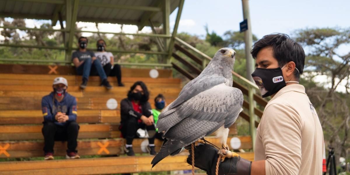 Zoológico de Quito abrirá sus puertas este 2 de julio