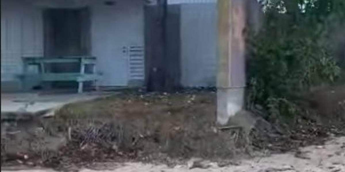 Muestran imágenes de abandono de las cabañas de Boquerón