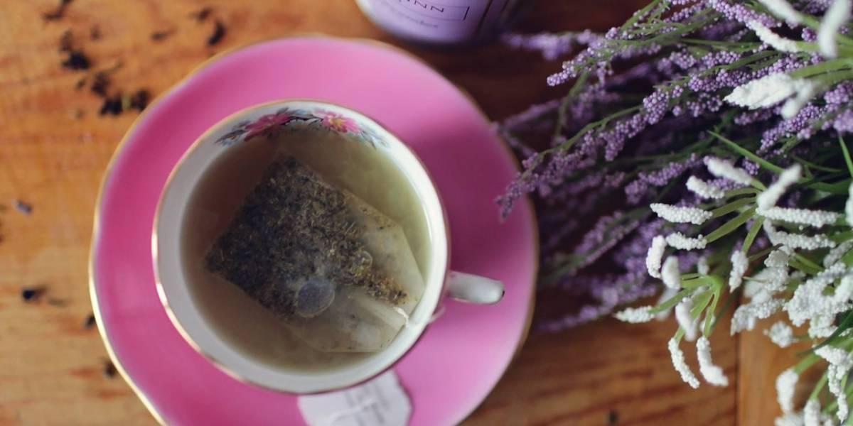 Chá de lavanda e camomila para dormir melhor