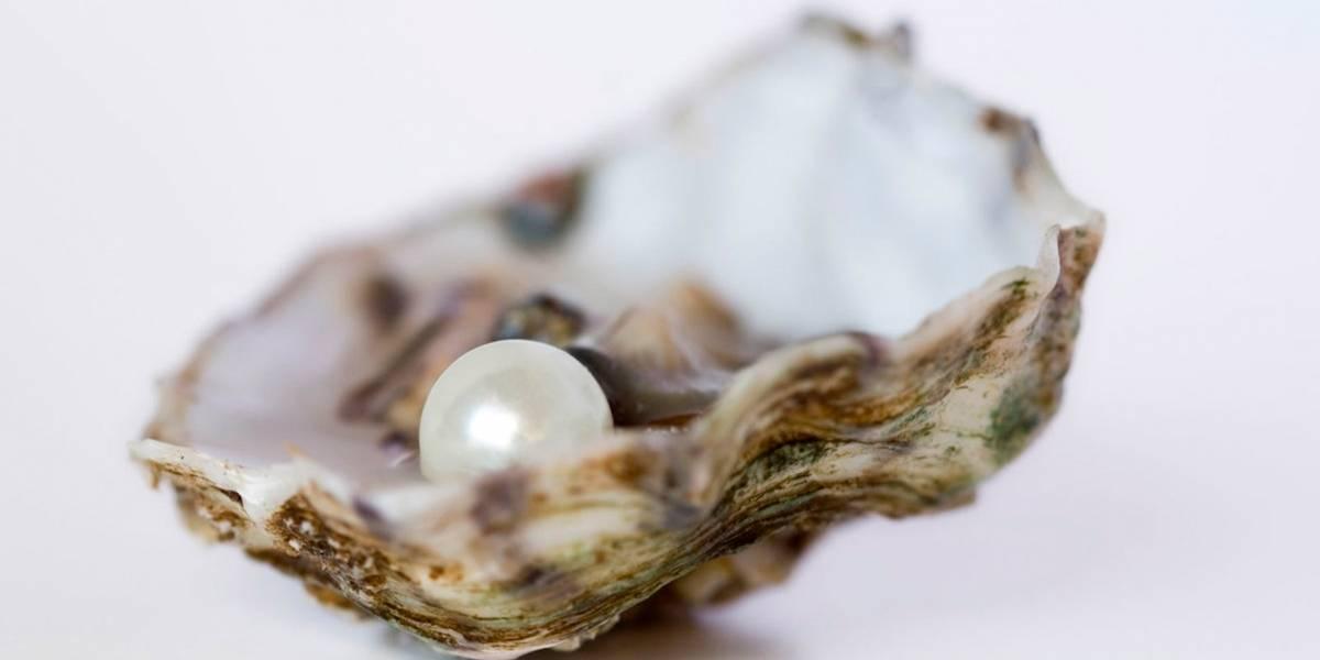¡Qué suerte! Mujer encontró una perla real en su comida en un restaurante de mariscos
