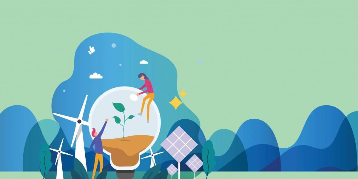 Ação ambiental deixa empresas 'bem na foto', mostra IBGE