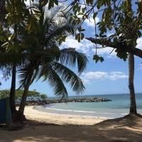 DRNA asegura que personas podrán utilizar las playas y balnearios adscritos a la agencia