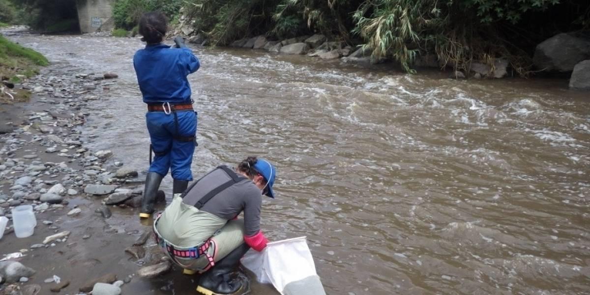 Estudio revela presencia de residuos de COVID-19 en los ríos Machángara y Monjas en Quito