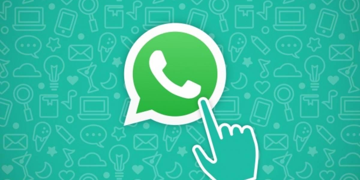 Nova atualização do WhatsApp para Android deve ser liberada nos próximos dias