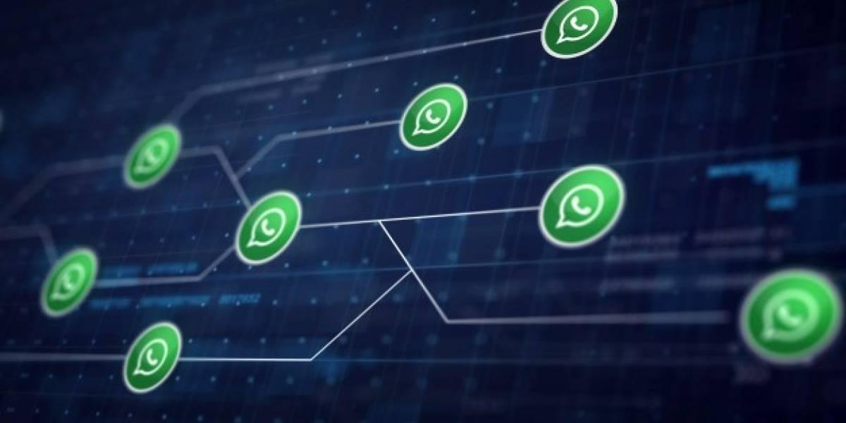 Nova funcionalidade do WhatsApp que será liberada em breve
