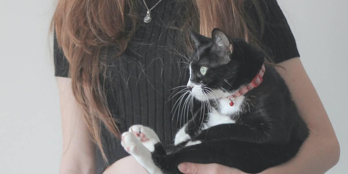 Las mujeres que aman a los gatos saben enfrentar la adversidad de la mejor manera