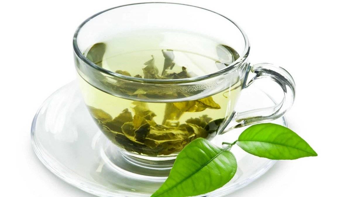 Tomar una taza de té verde diariamente por un mes te traerá beneficiosos resultados.