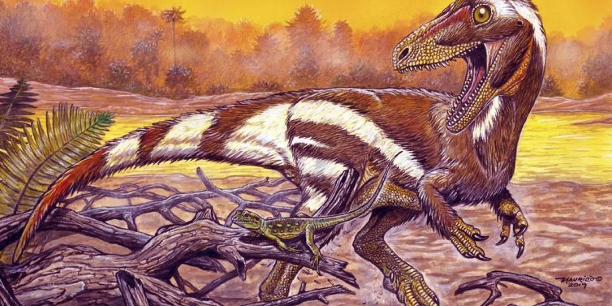 'Nascido do fogo': fóssil de espécie inédita de dinossauro é batizado em homenagem ao Museu Nacional
