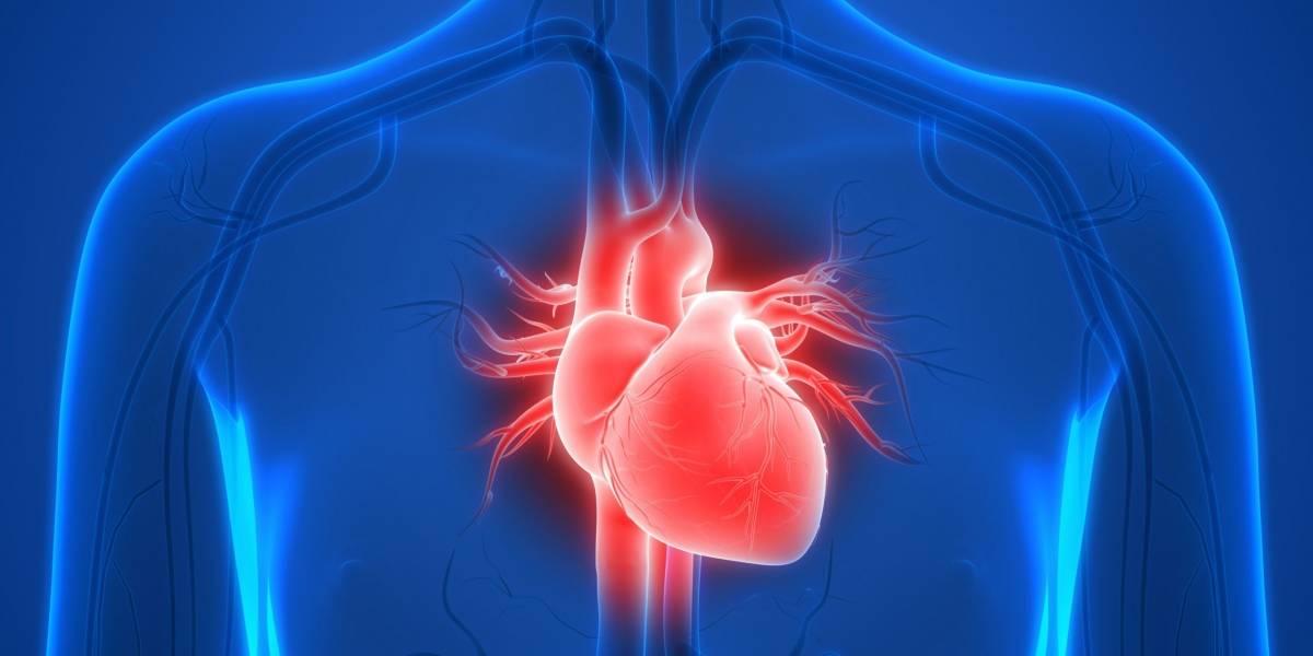 """""""Síndrome del corazón roto"""" aumentó con el coronavirus, según un estudio"""