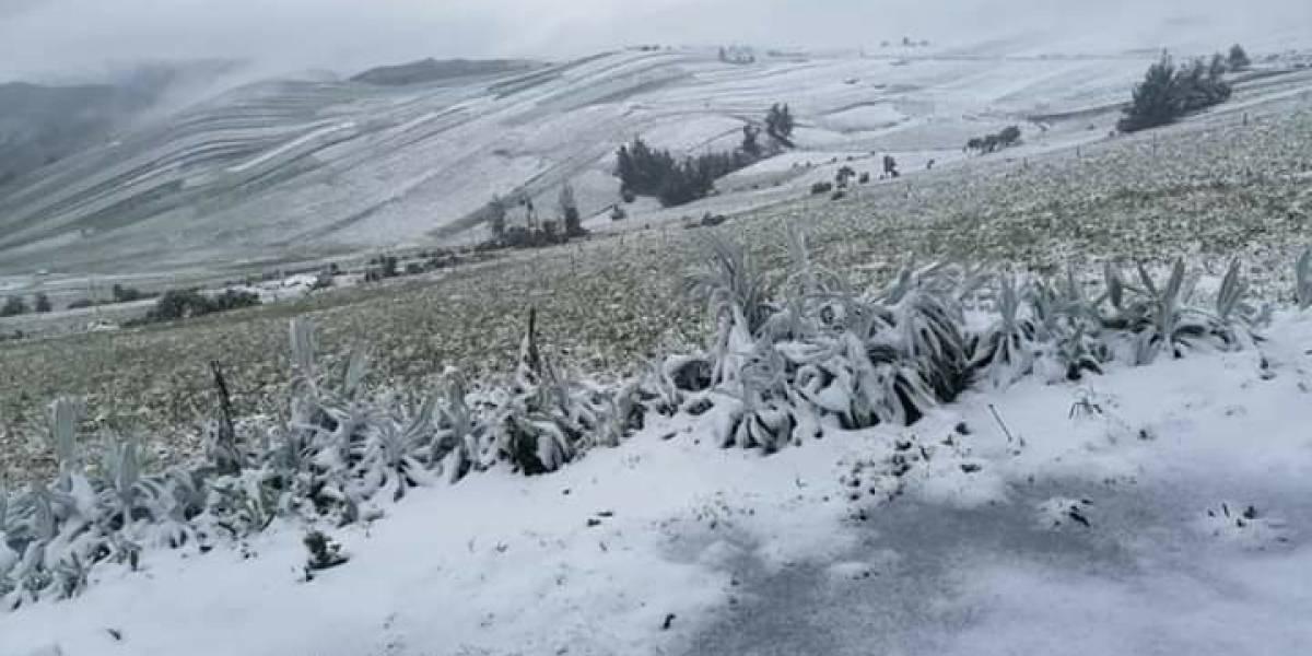 ¡No parece pero es en Ecuador! Manto blanco cubrió algunas zonas de la Sierra