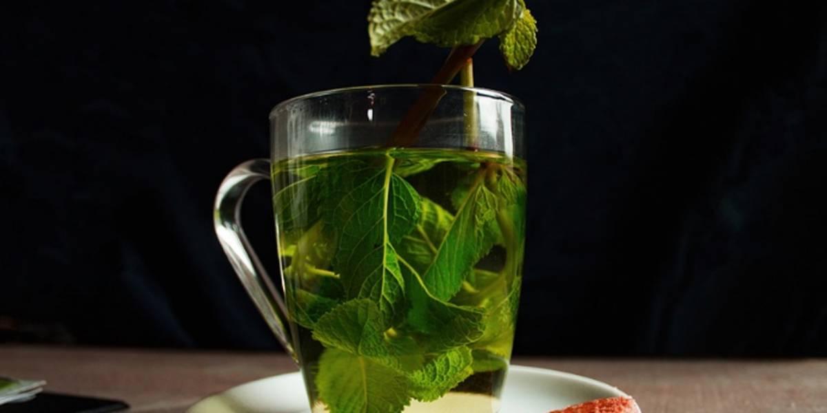 Refresca tu organismo con este té verde con limón y menta