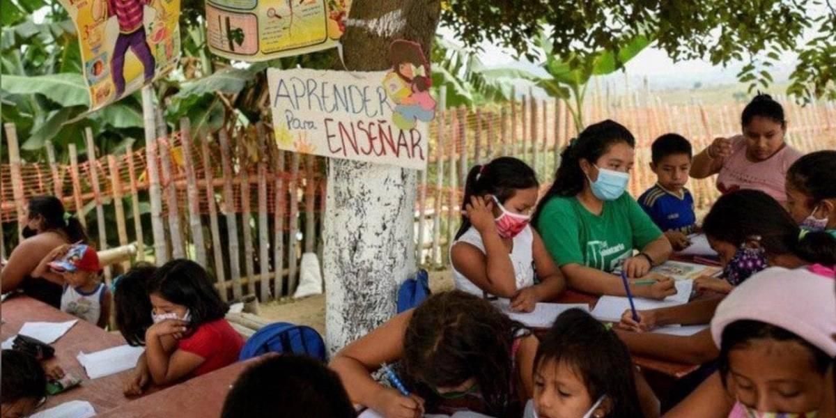 Joven instala escuela bajo un árbol para ayudar a niños sin internet