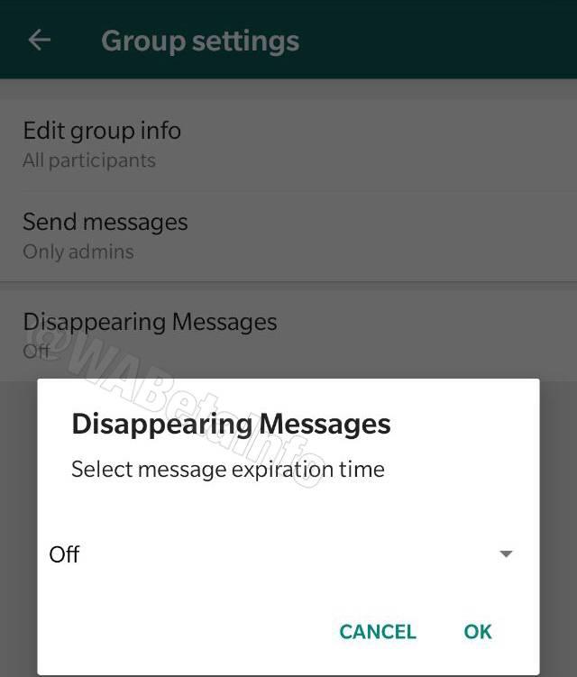 WhatsApp Auto destrucción