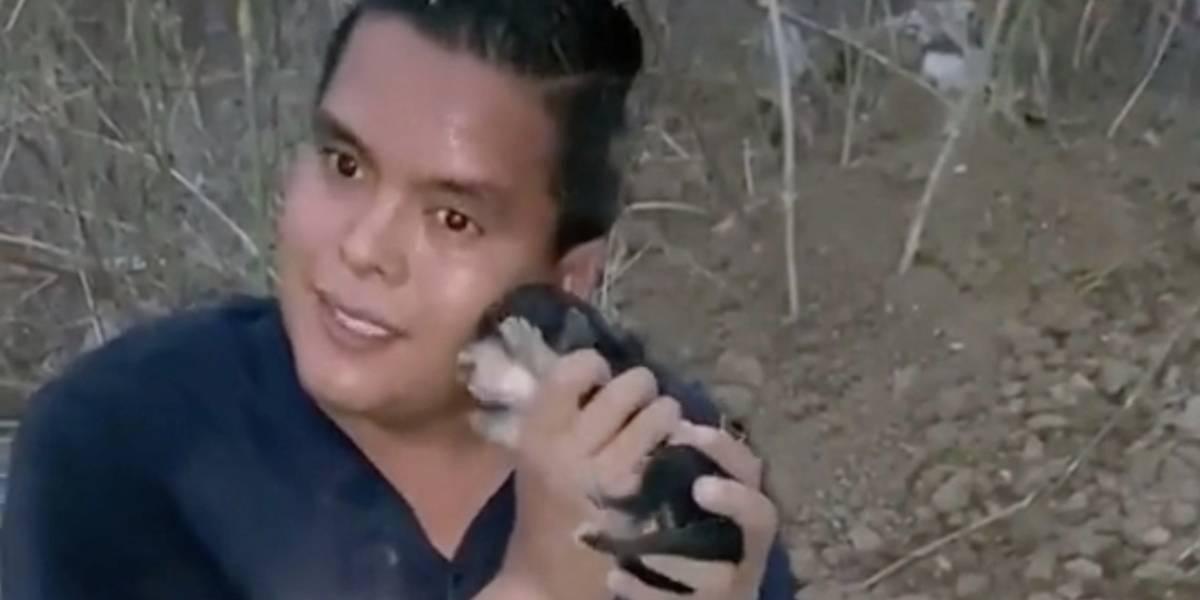 Joven arriesgó su vida para rescatar a unos cachorros: estaban enterrados y los sacó con los pies