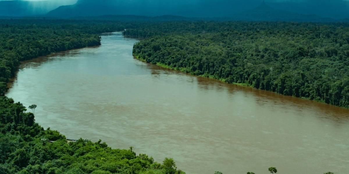 Alerta de desmatamento na Amazônia sobe e é o maior em 5 anos, diz Inpe