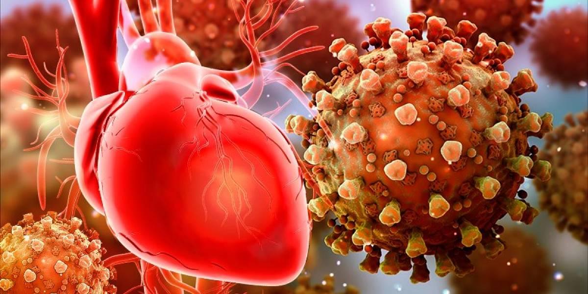 COVID-19: Autopsias revelan un inusual patrón de daño cardíaco