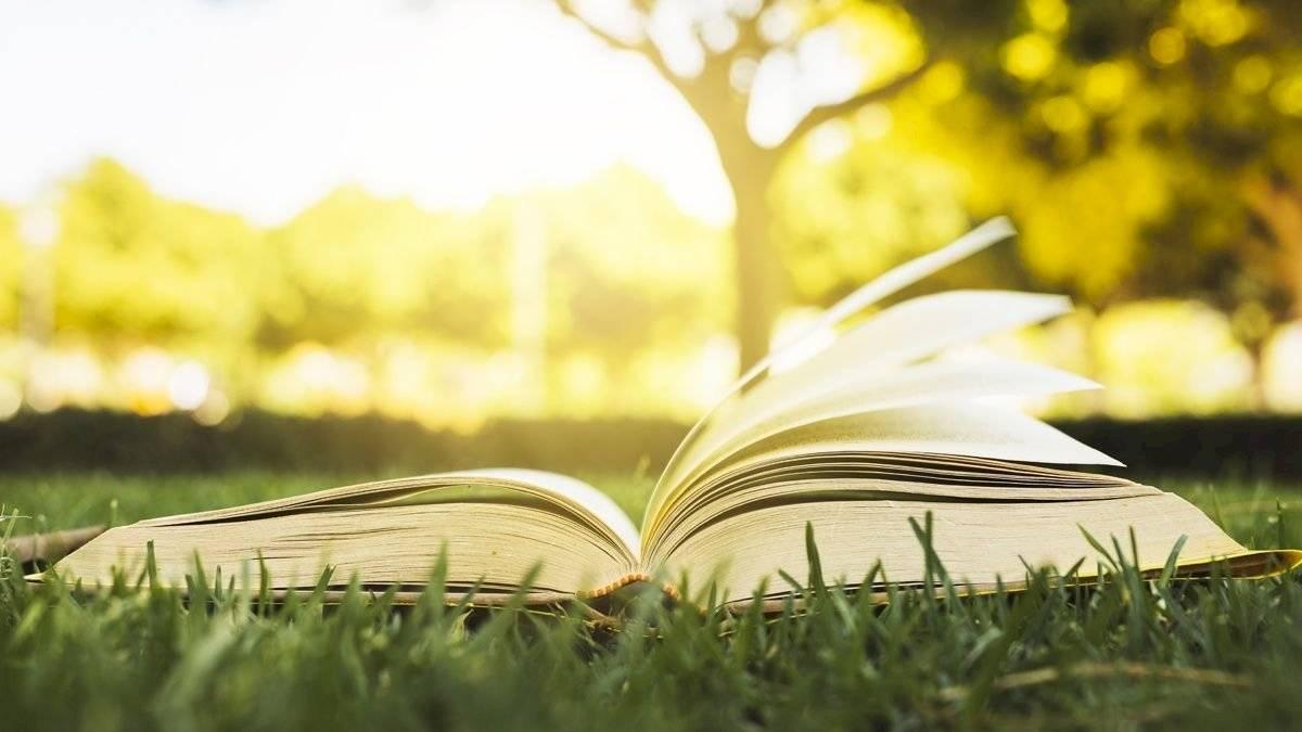 Leer libros sobre la naturaleza o ver programas de Tv sobre el tema será de gran ayudar