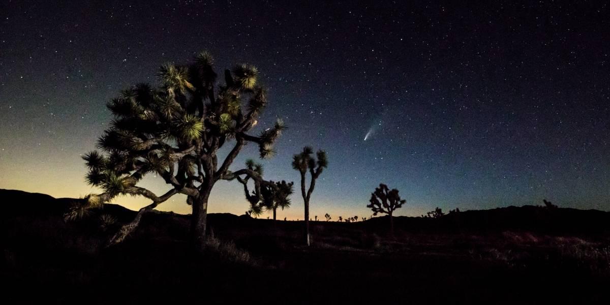 Cometa Neowise pode ser visto por brasileiros nesta quinta e sexta