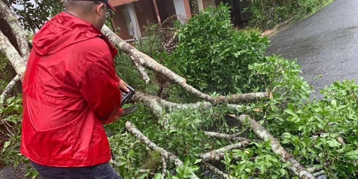 Carreteras obstruídas y derrumbes en Cayey