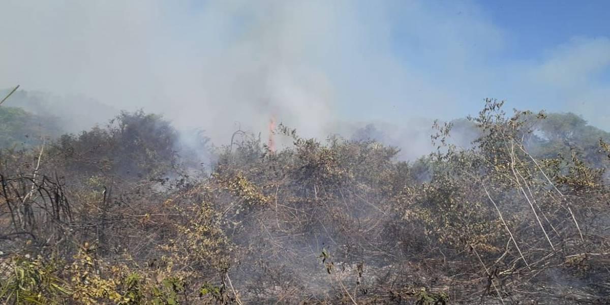 Fumaça do Pantanal já atinge São Paulo, diz MetSul
