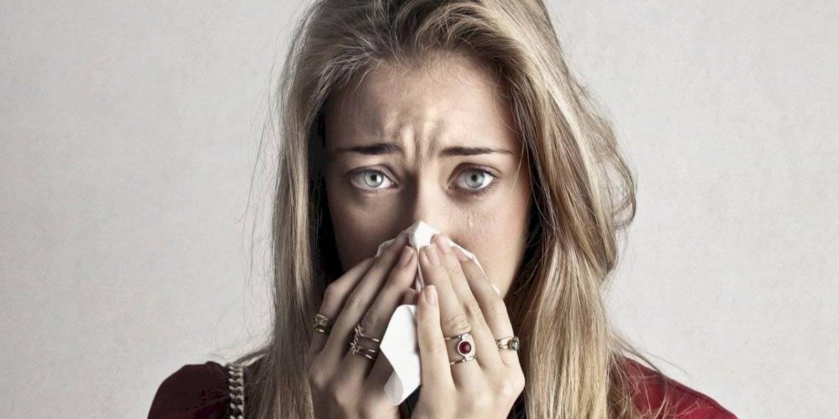 5 remédios naturais para combater a sinusite