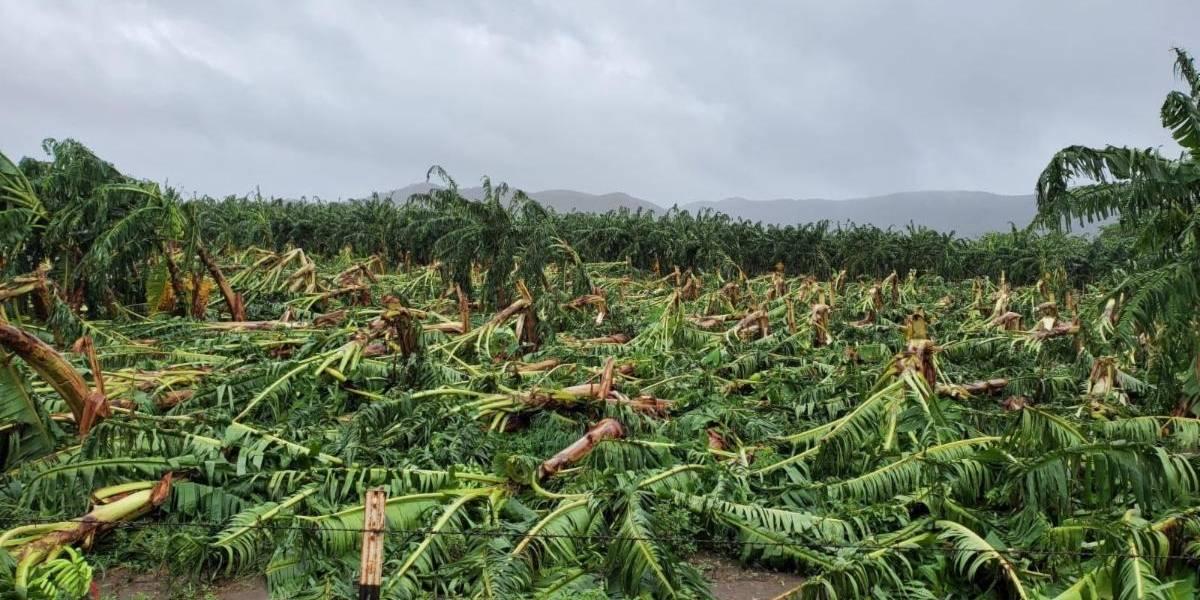 Exhortan a agricultores a solicitar fondos federales del CFAP 1 y CFAP 2