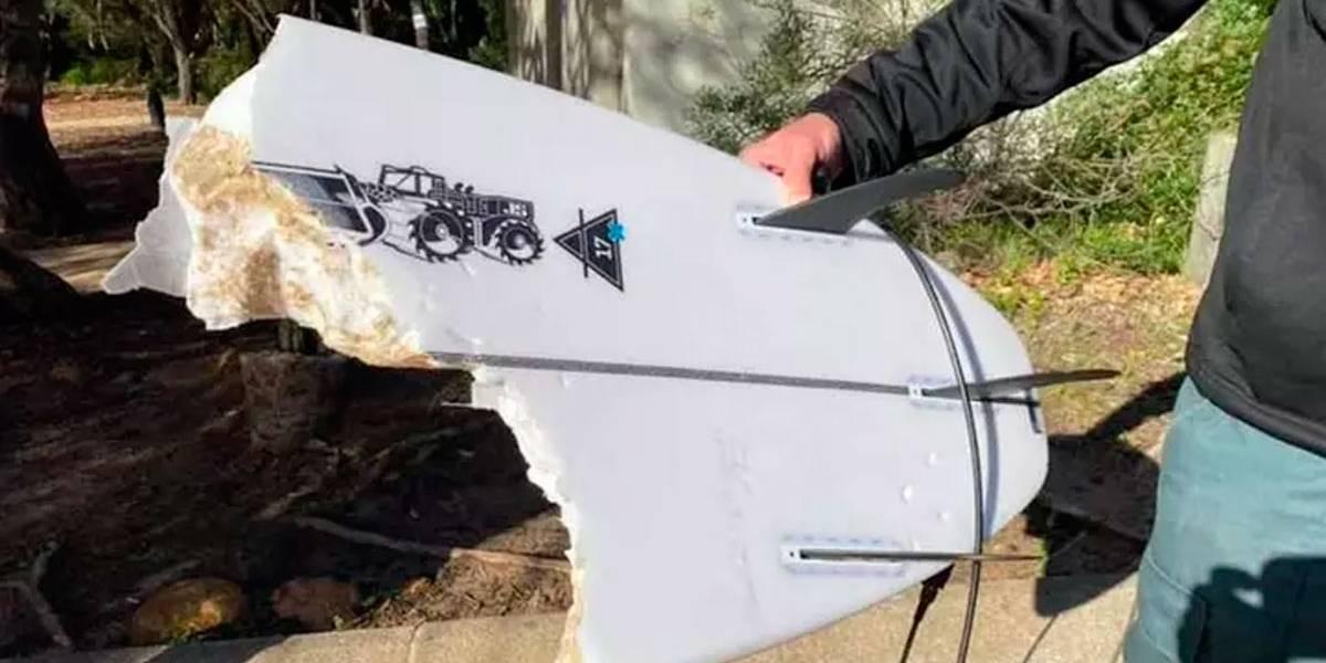 Surfista é atacado por imenso tubarão branco e tem sua prancha estraçalhada por mordidas