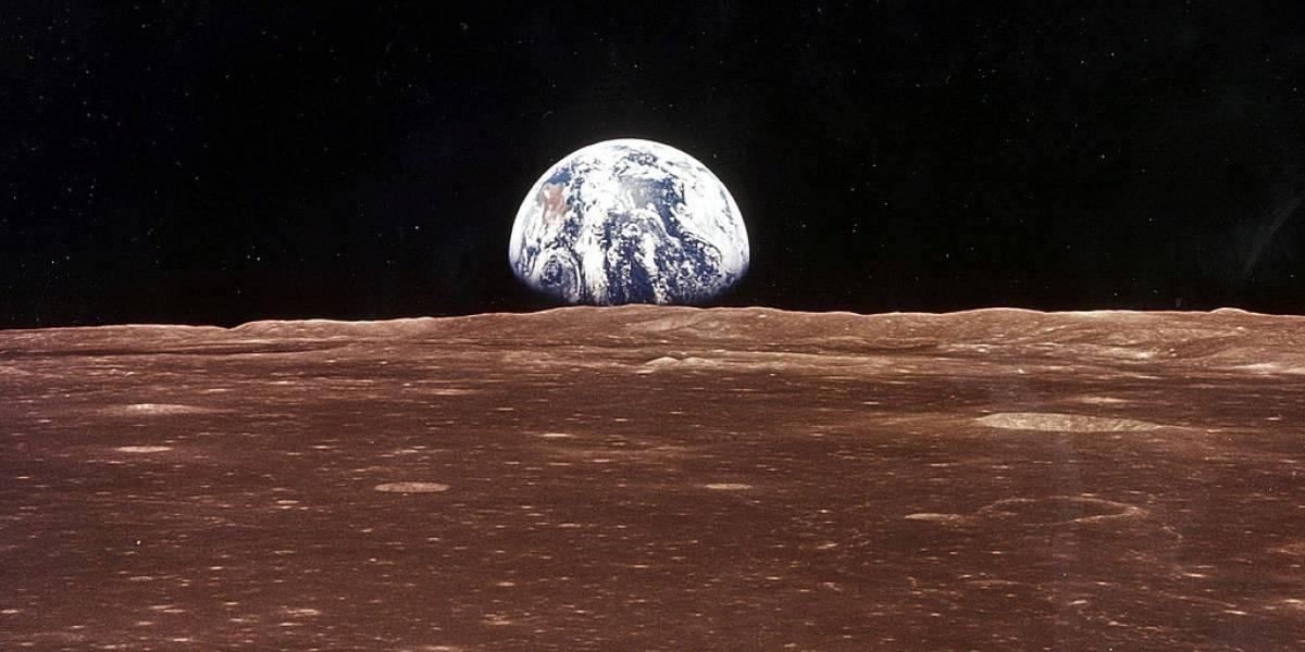 Como seria a Terra sem os seres humanos?