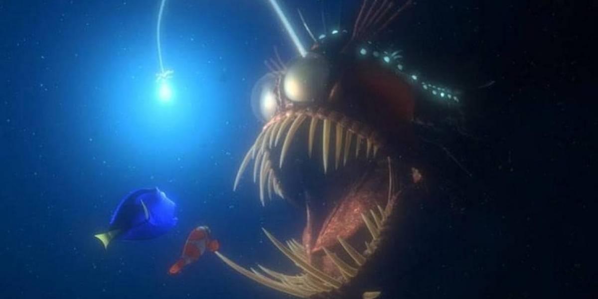 La impresionante forma de apareo del Rape de aguas profundas: el pez que casi se come al padre de Nemo