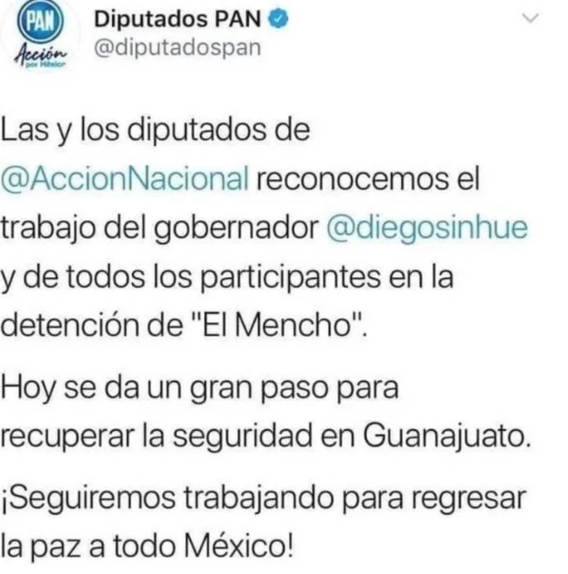 Diputados Acción Nacional