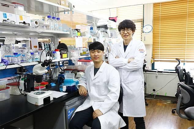 Científicos que trabajan contra la vejez