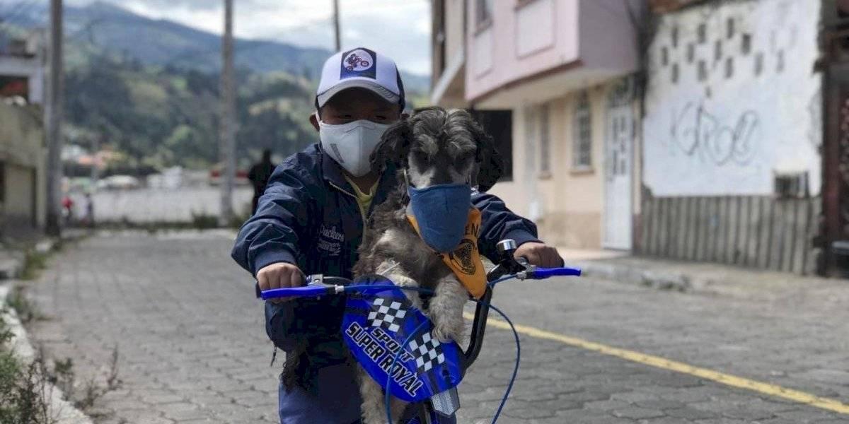 Bicicleta nueva y tablet recibió Anthony, el niño que le pone mascarilla a su perro