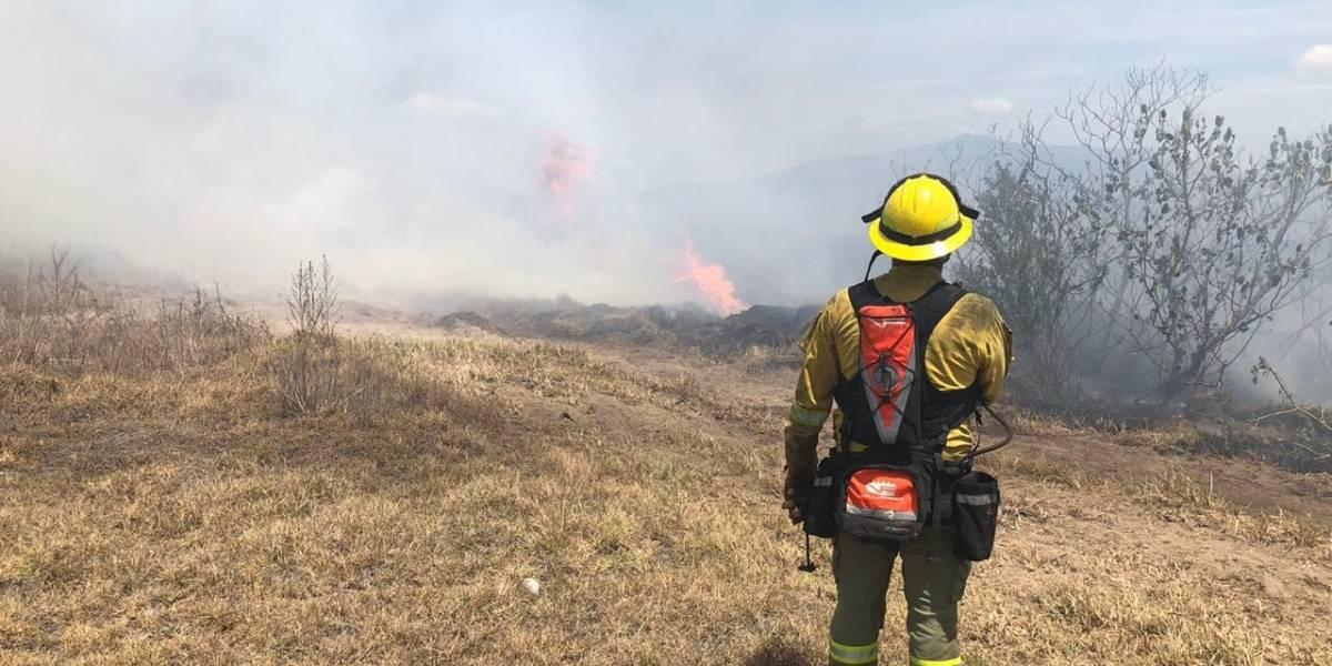 Bomberos combaten incendios forestales en el sector de Checa