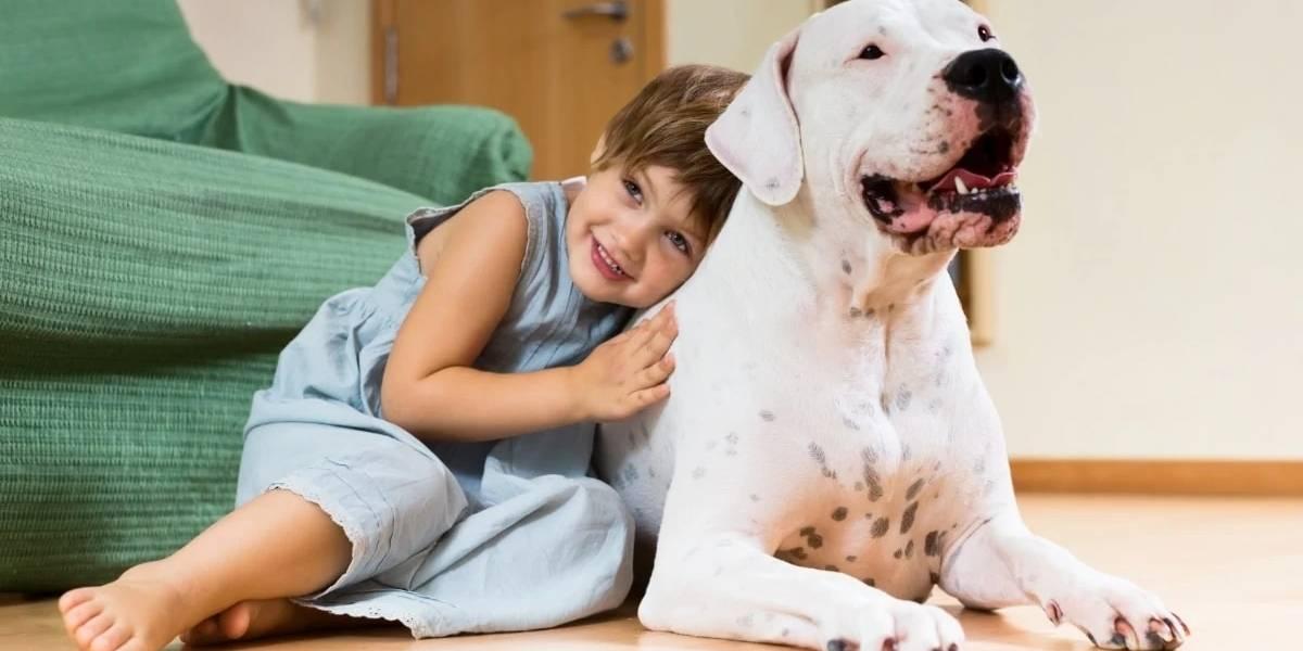 Ter um cachorro pode ajudar criança a desenvolver habilidades sociais, diz estudo