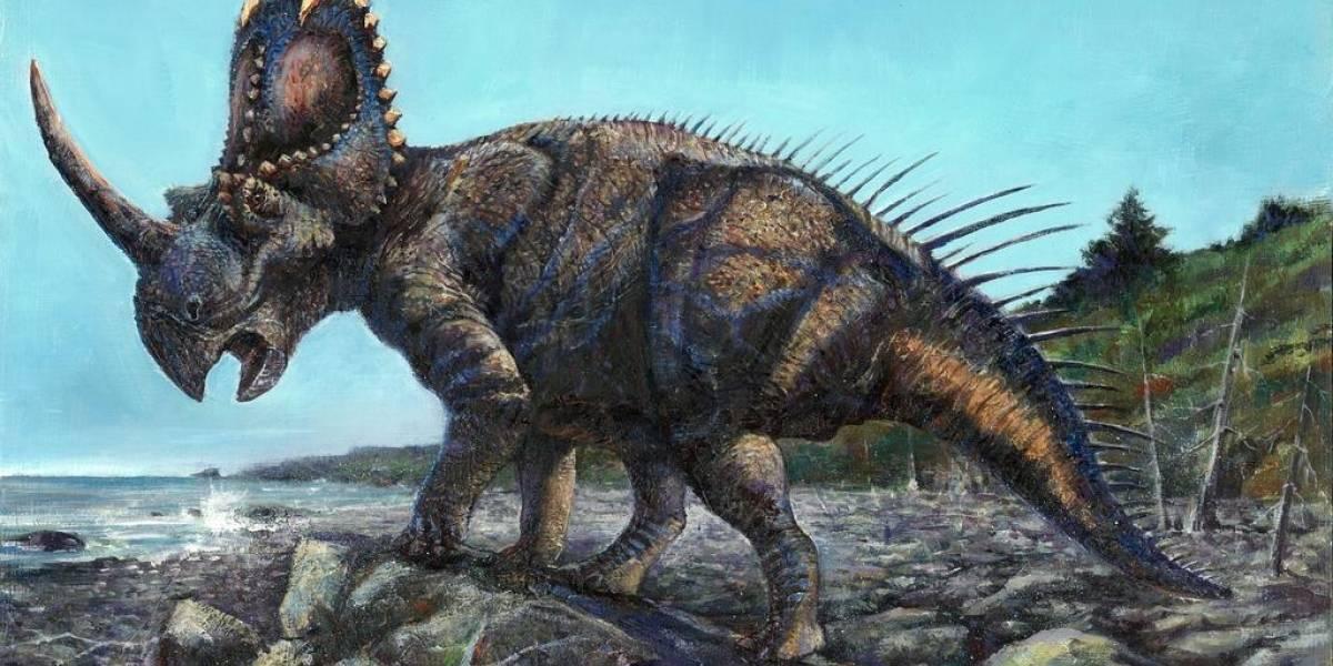 El cáncer maligno existió mucho antes de lo que imaginas: encontraron vestigios en un dinosaurio